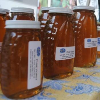 honey-group-615