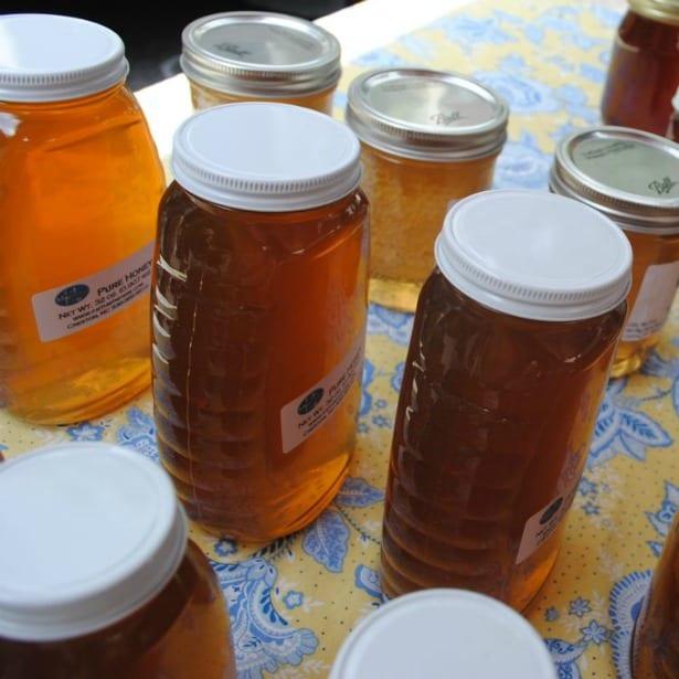 honey-group2